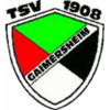 Cheerleader TSV Gaimersheim
