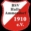 BSV Halle-Ammendorf 1910 e.V.