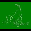 Play Bow e.V. Thüringen für Mensch und Hund