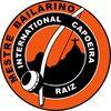 SV International Capoeira Raiz e.V.