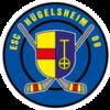 ESC Hügelsheim 09 e.V.