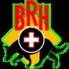 BRH Rettungshundestaffel Rheingau-Taunus e.V.