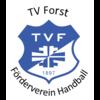 Förderverein des Handballs im TV Forst e.V.