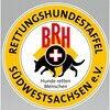BRH RHS Südwestsachsen
