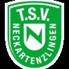 TSV Neckartenzlingen 1888 e.V.