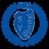 SV Blau-Weiß Oberthal e.V.