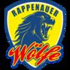 Handballjugend TV 1895 Bad Rappenau e.V.